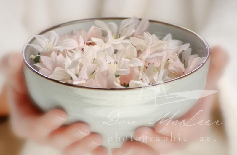 commercial-bowl_of_flowers